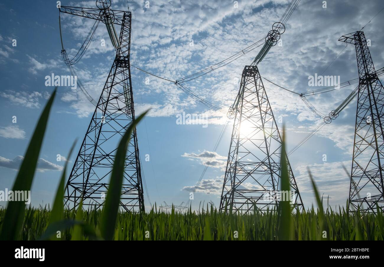 ligne haute tension avec herbe verte. concept d'énergie verte haute tension Banque D'Images