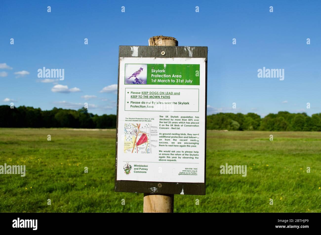 Un panneau de zone de protection skylark à Wimbledon Common, Londres, Royaume-Uni Banque D'Images