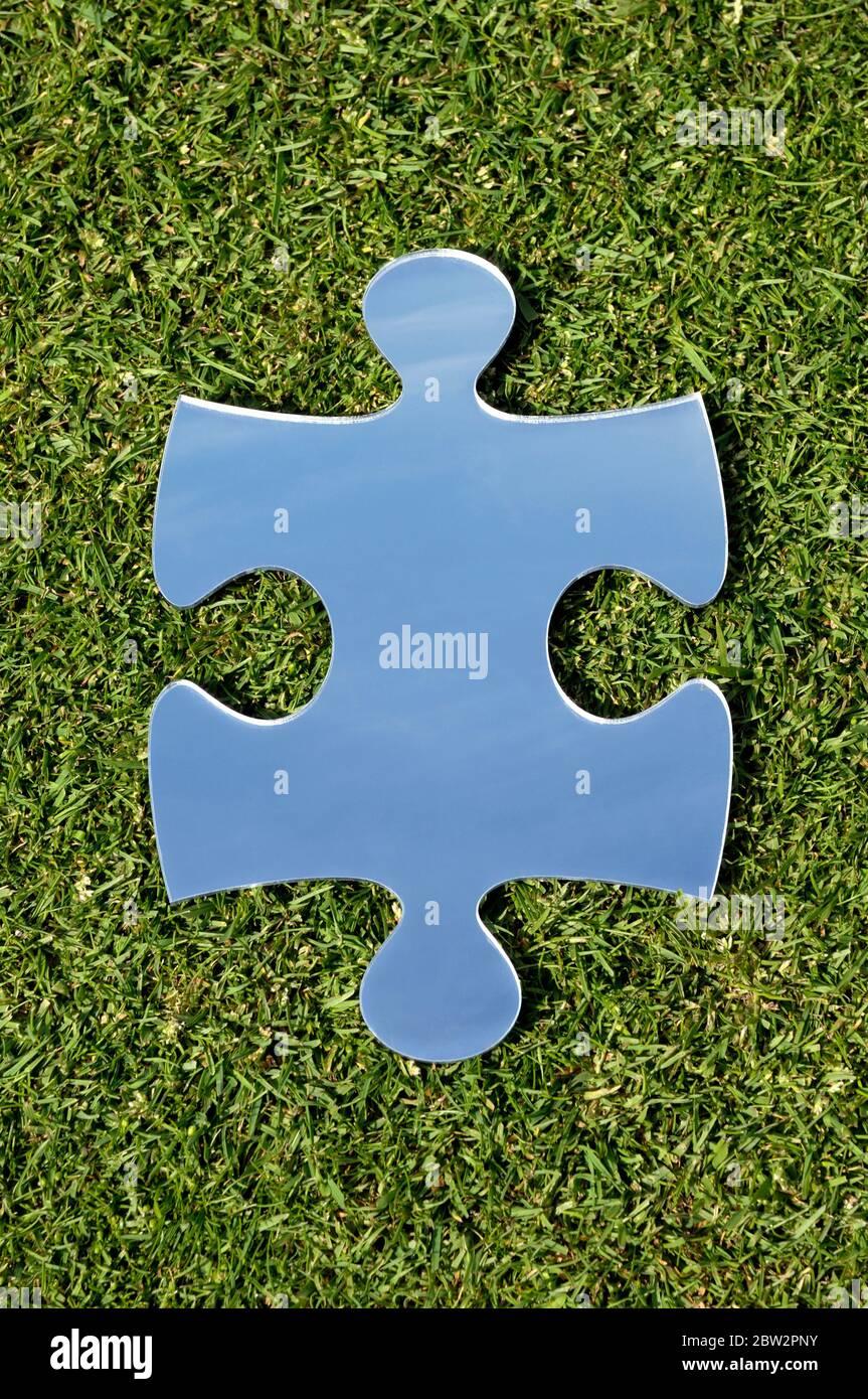 Un miroir en forme de scie sauteuse sur une pelouse Banque D'Images