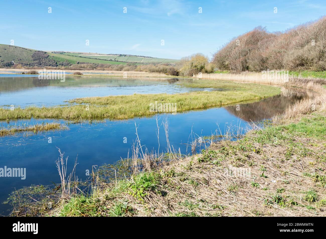 Vue sur la rivière Cucmere près de Seaford et Eastbourne, East Sussex, de la forêt de Friston, de belles réflexions, point de mire sélectif Banque D'Images