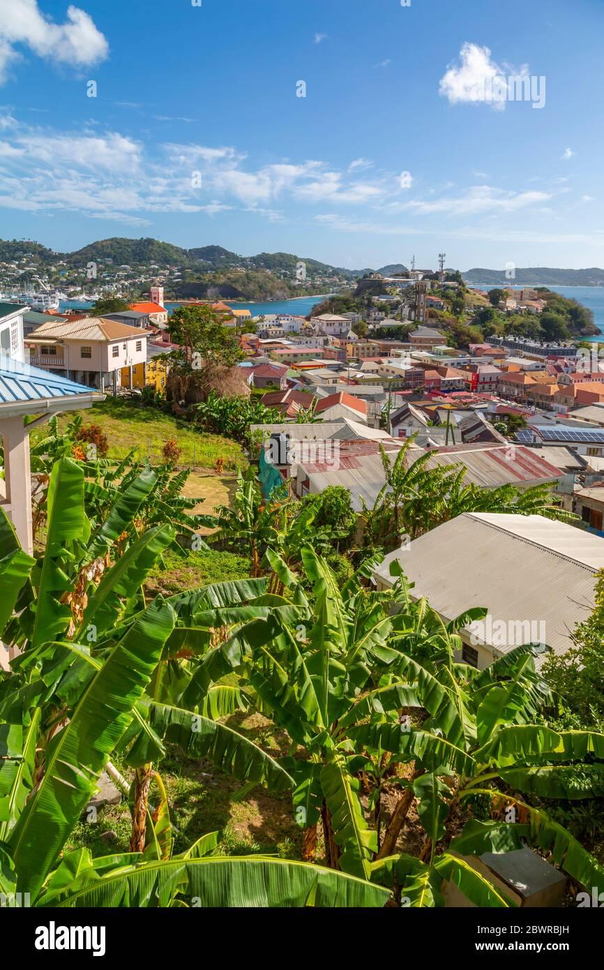 Vue sur la ville de St Georges et la mer des Caraïbes, St George's, Grenade, les îles du vent, les Antilles, les Caraïbes, l'Amérique centrale Banque D'Images