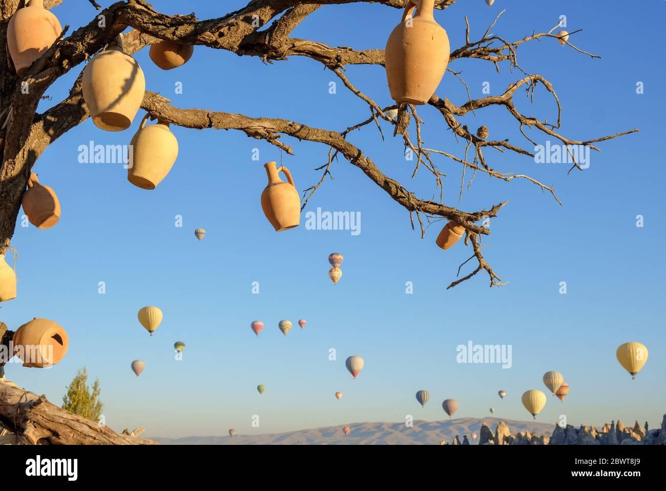 Arbre de souhaits en Cappadoce, Turquie, cruches d'argile sur les branches d'un arbre séché et ballons d'air chaud volant en arrière-plan Banque D'Images