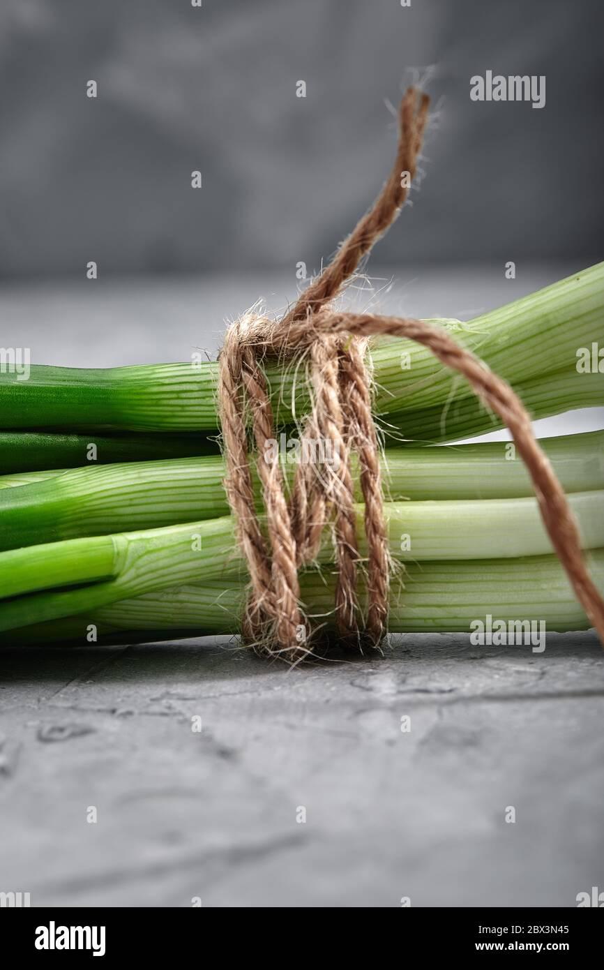 Oignons verts frais attachés avec une corde, gros plan, concept de nourriture et de santé avec espace pour le texte, fond gris. Banque D'Images