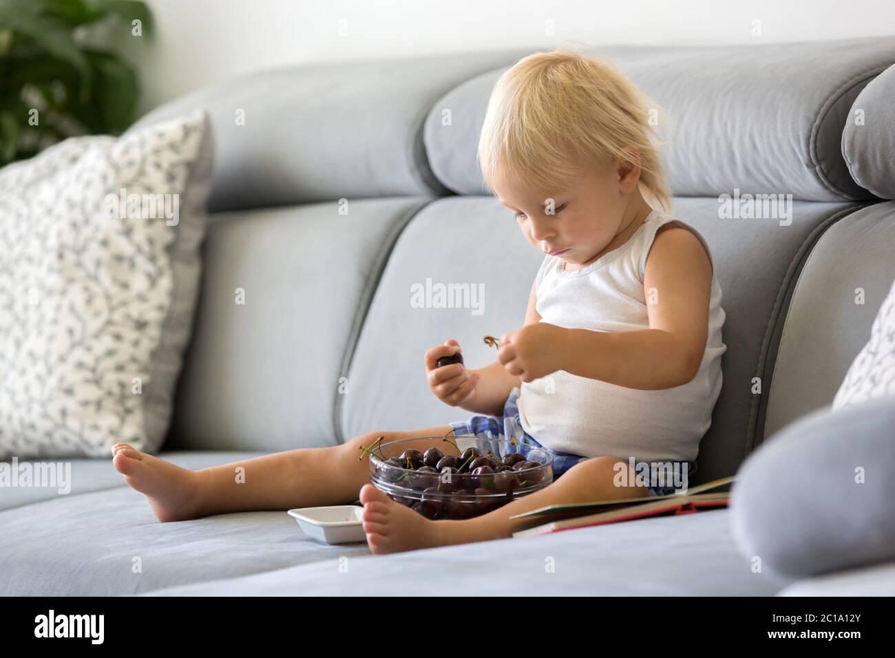 Un tout-petit, assis sur un canapé, mangeant des cerises et regardant un livre d'images, en dégustant un repas sain Banque D'Images