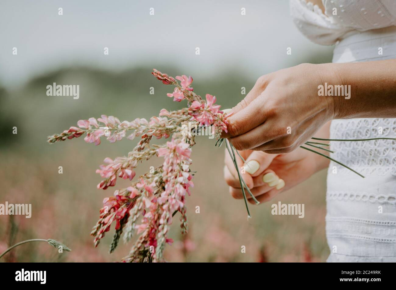 Gros plan sur les mains d'une femme qui tressent des fleurs sauvages dans une couronne de fleurs Banque D'Images