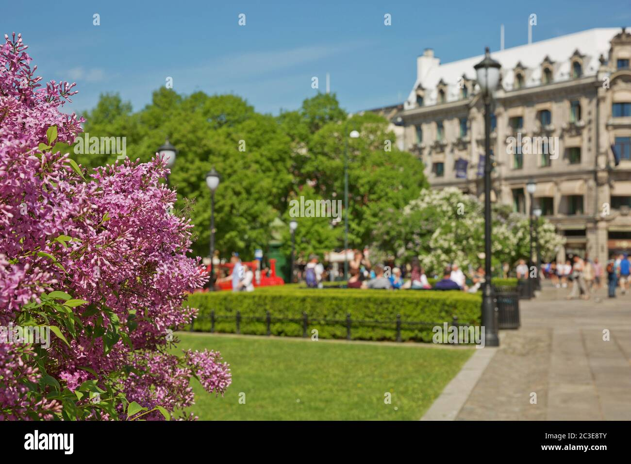 Fleurs et personnes en pleine floraison en profitant de la journée d'été ensoleillée au parc d'Oslo, Norvège Banque D'Images