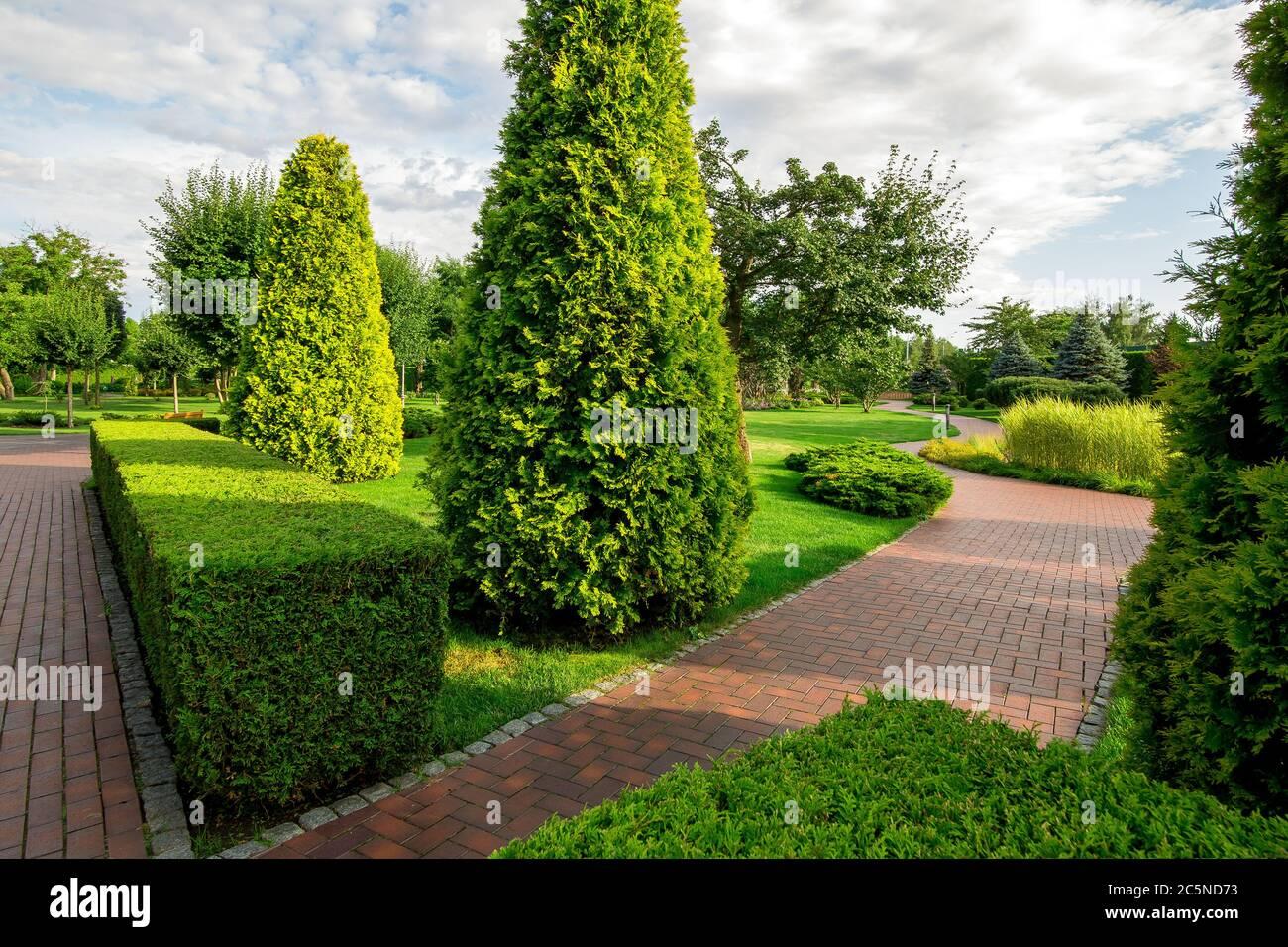 un parc avec haie de buis et thuja à feuilles persistantes avec des trottoirs tortueux pour des promenades parmi les plantes avec des nuages dans le ciel le jour ensoleillé d'été. Banque D'Images