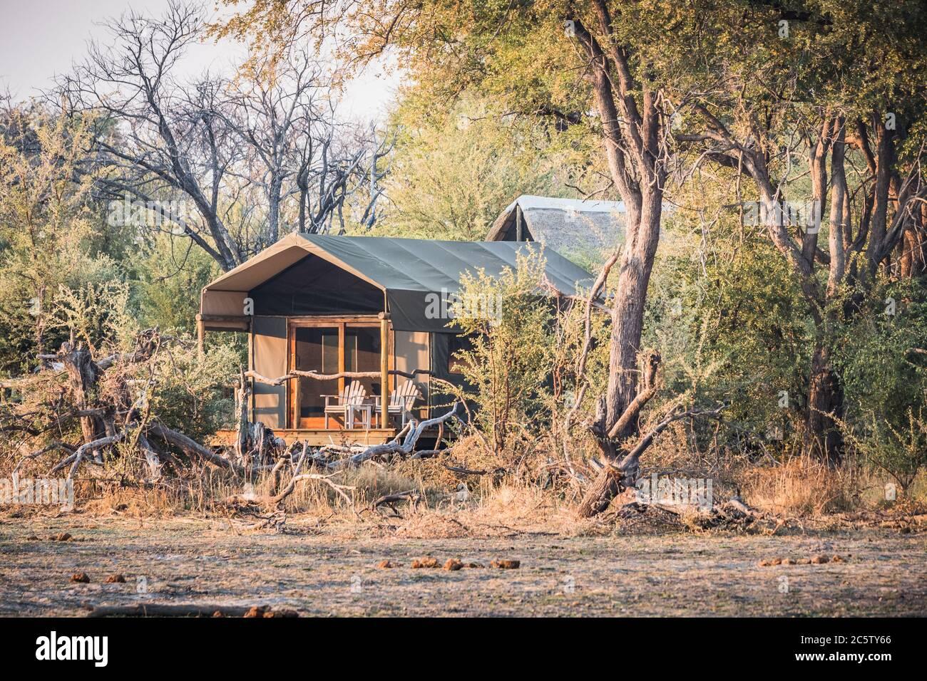 Tente de luxe Safari dans un camp de tentes dans le delta d'Okavango près de Maun, Botswana, Afrique Banque D'Images