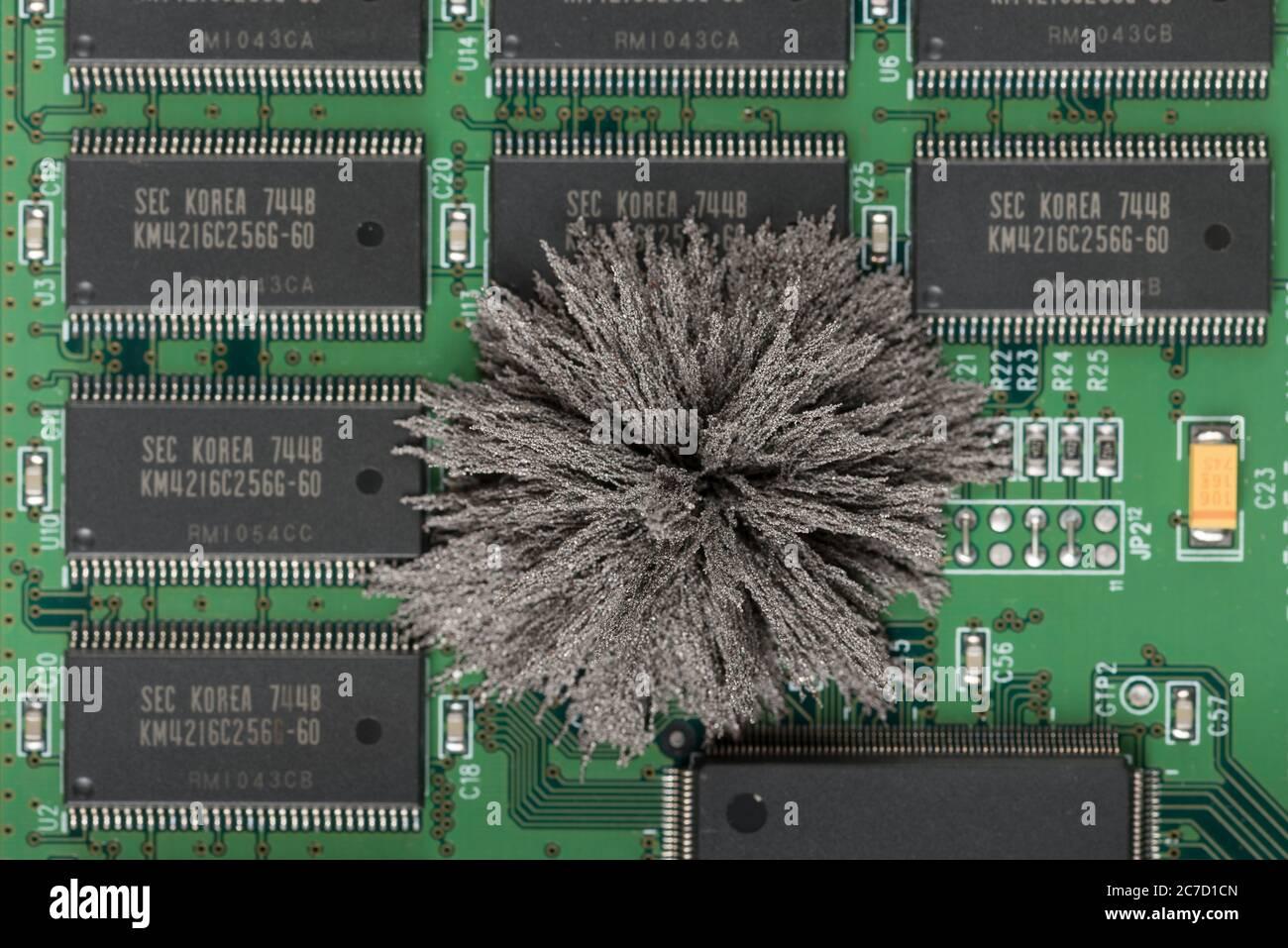 Les champs magnétiques passant par les cartes PC Mac où les limaille de fer montrent des lignes de champ invisibles provenant d'un seul pôle de néodyme permanent Banque D'Images