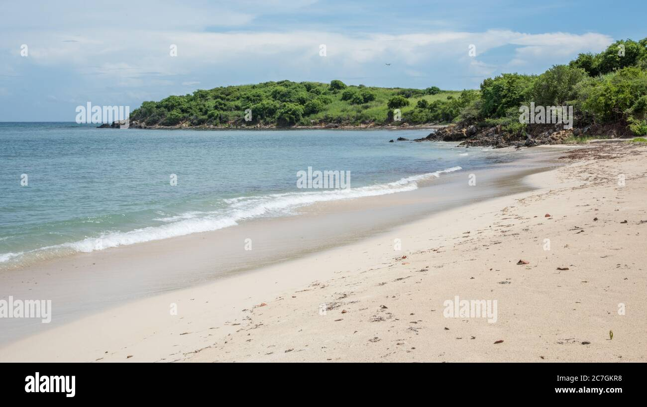 Les paisibles vagues de la mer des Caraïbes se baladant sur la plage du Cramer's Park avec une végétation luxuriante sur Sainte Croix dans l'USVI Banque D'Images