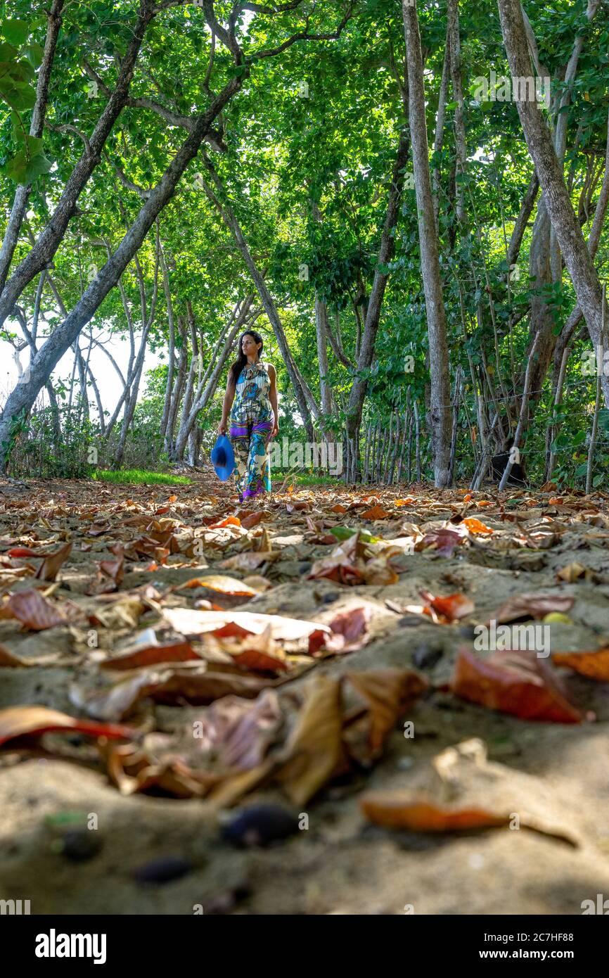 Amérique, Caraïbes, grandes Antilles, République dominicaine, Cabarete, femme marche à travers une forêt ombragée près de la plage vers le Natura Cabana Boutique Hotel & Spa Banque D'Images