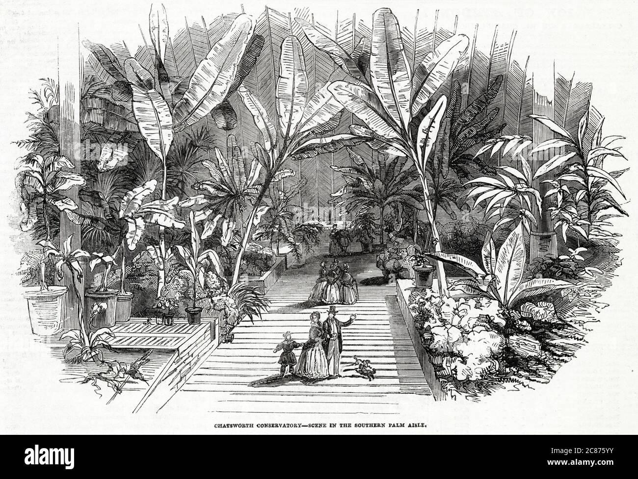 Scène dans l'allée de palmiers sud. Date: 1846 Banque D'Images