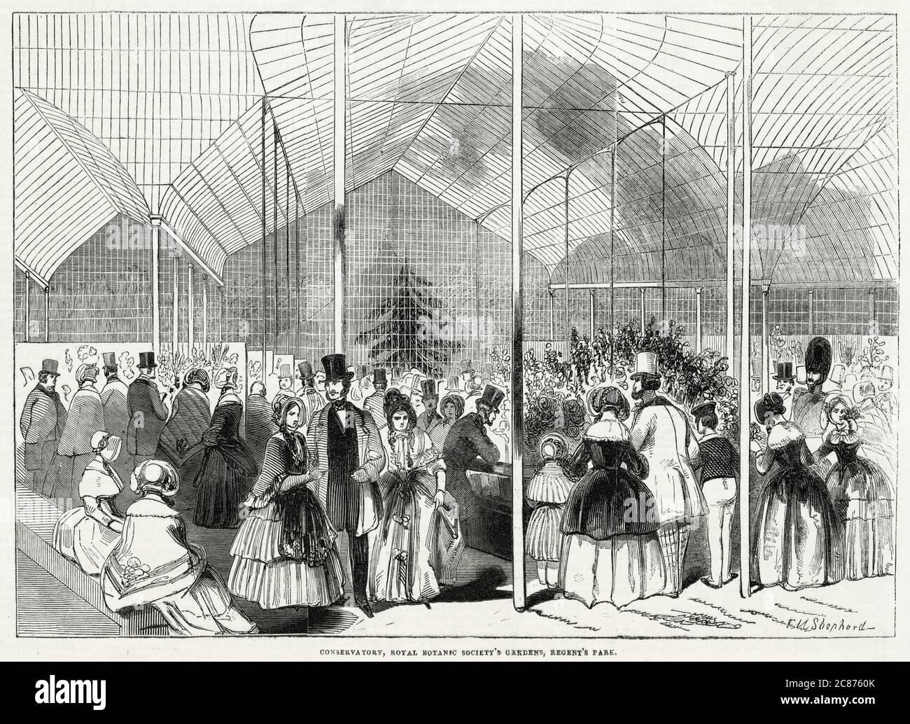 Le premier spectacle floral aux jardins de la Royal Botanic Society, dans le cercle intérieur du Regent's Park, Londres. 1846 Banque D'Images