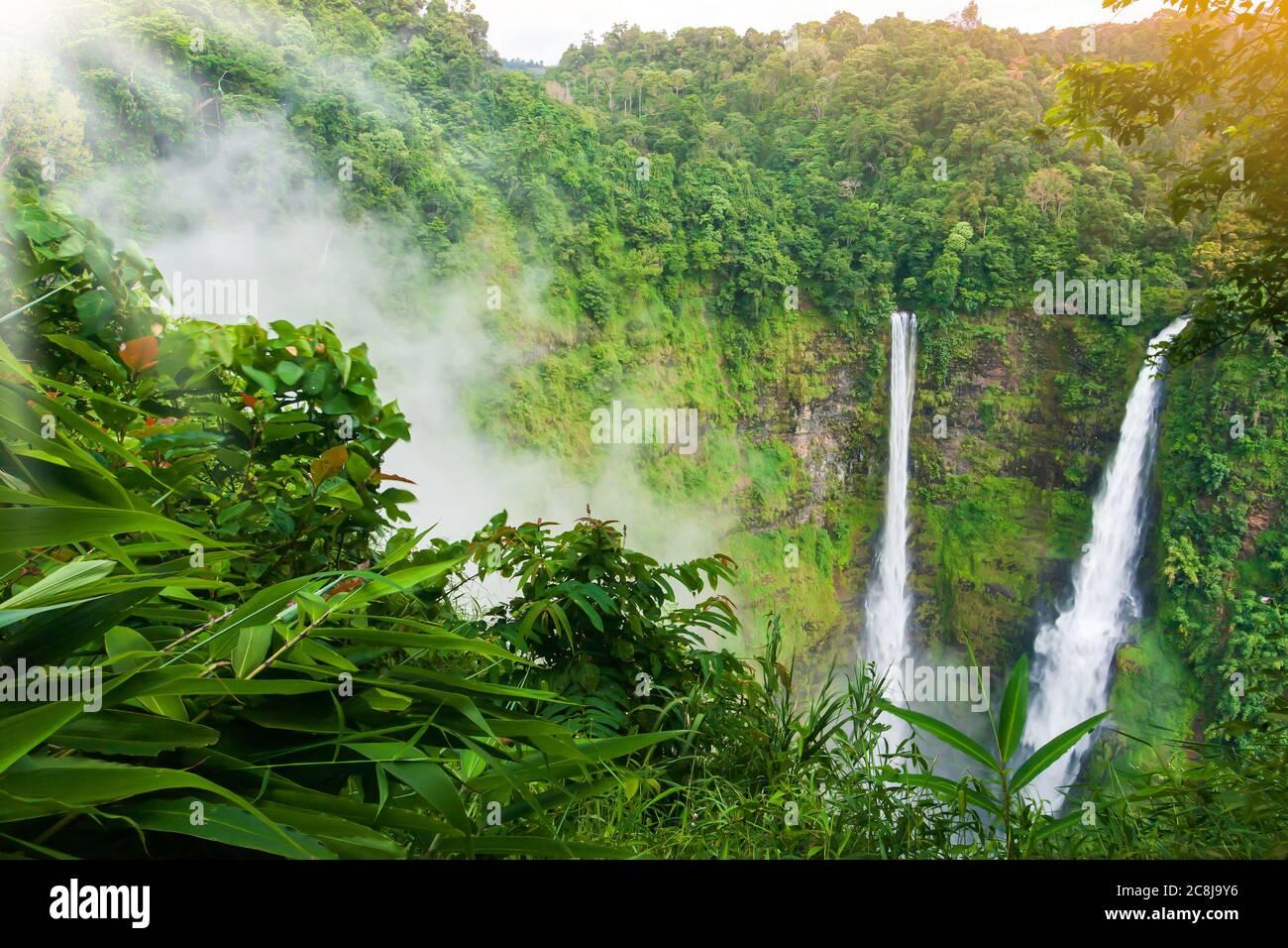 Vue imprenable sur la cascade de TAD Fane dans la brume matinale, superbe cascade jumeau dans la brume, destinations de voyage au sud du Laos. Banque D'Images