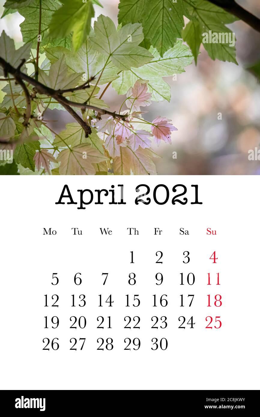Calendrier Du Mois Davril 2021 Le Mois D'avril Banque d'image et photos   Alamy
