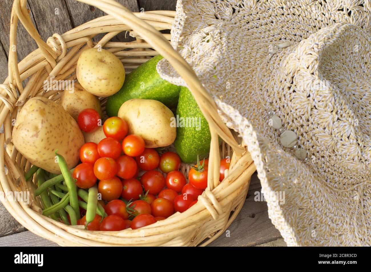 Fermez le panier de légumes biologiques fraîchement cueillis. Banque D'Images