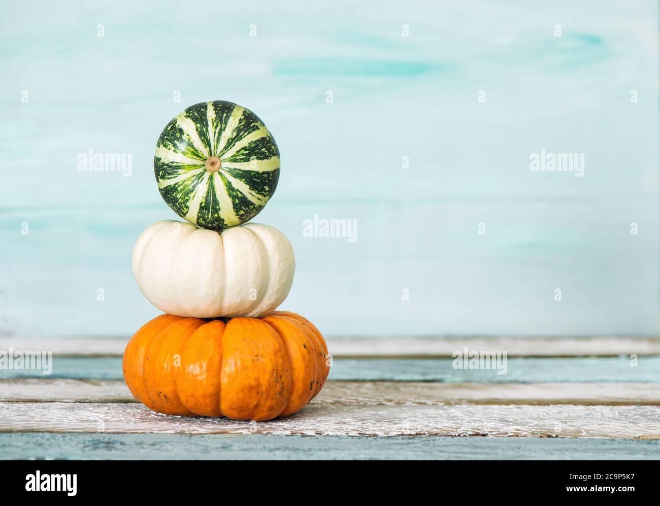 Automne. Thanksgiving. Décoration citrouille sur fond bleu Banque D'Images
