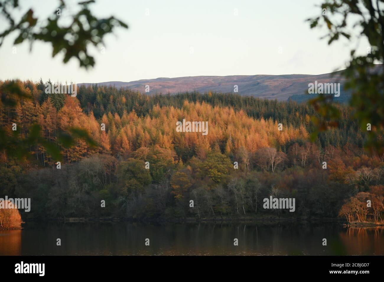 Couleur d'automne sur un Loch en Écosse. Banque D'Images