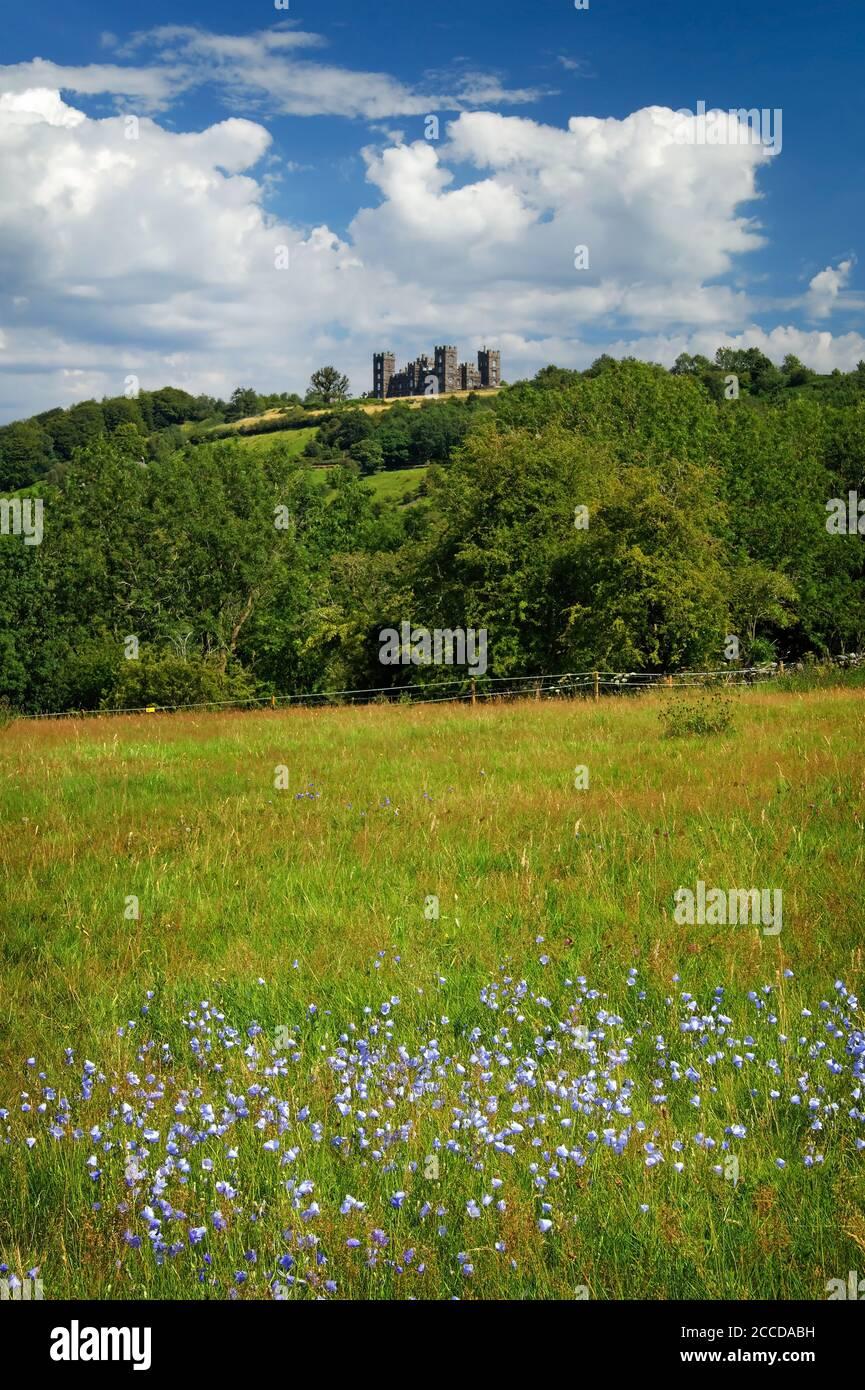 Royaume-Uni, Derbyshire, Matlock, Riber Castle de High Tor Banque D'Images