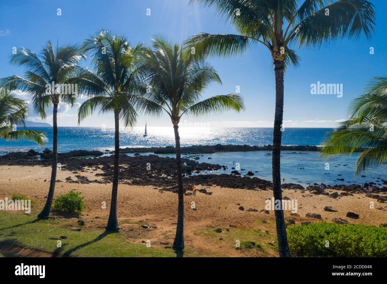 Sharks Cove, North Shore, Oahu, Hawaï Banque D'Images