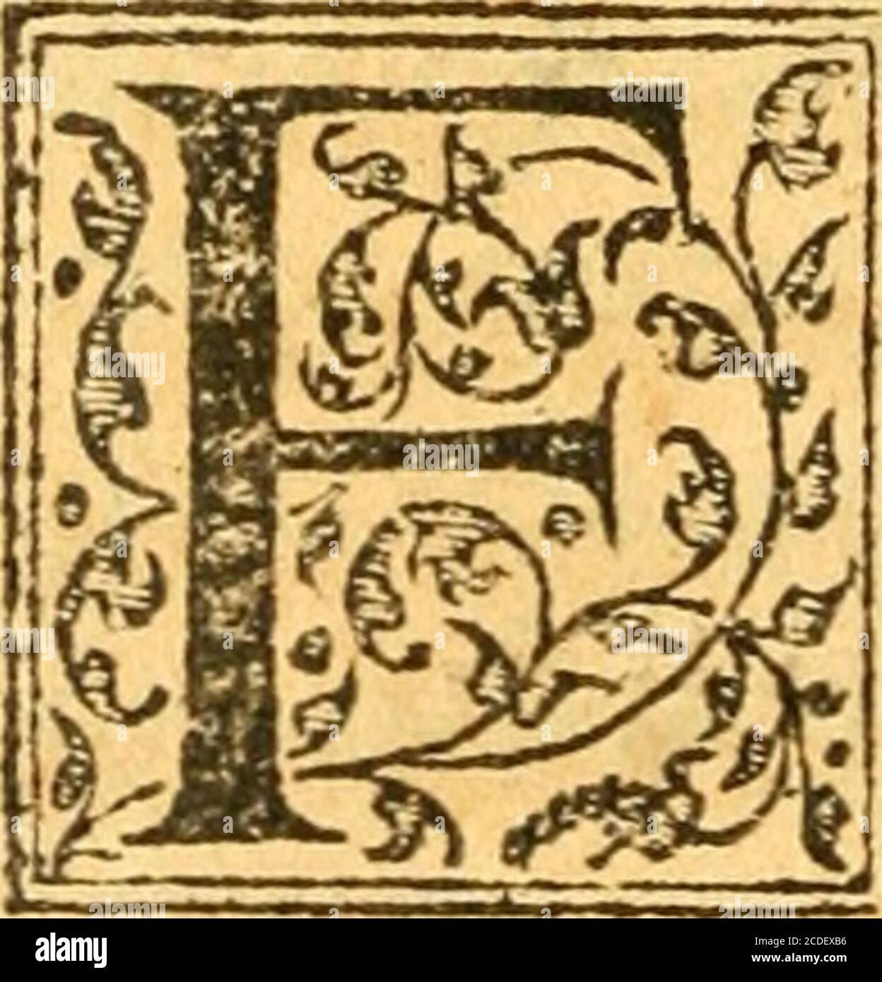 . Aeliani de historia animalium libri XVII . DEMETRII CON- fiantinopolitamp de ctira tf medicina acci- -pitrumy LIBER SECVNBVSy PETRO GILIO iNTlRFRF.xe. ?? difficulté cm fpirandi. Olll> coili>myYhji mafcuU)(picx IndijCyce^heos^theriacjs, caryophiyfandarachjCypithri^olehgalbani)maslkhj^>fmorum^ ^ncia:yitio yeterimadsudri^Uhiplisi kapt^Uhiplisi kapt Banque D'Images