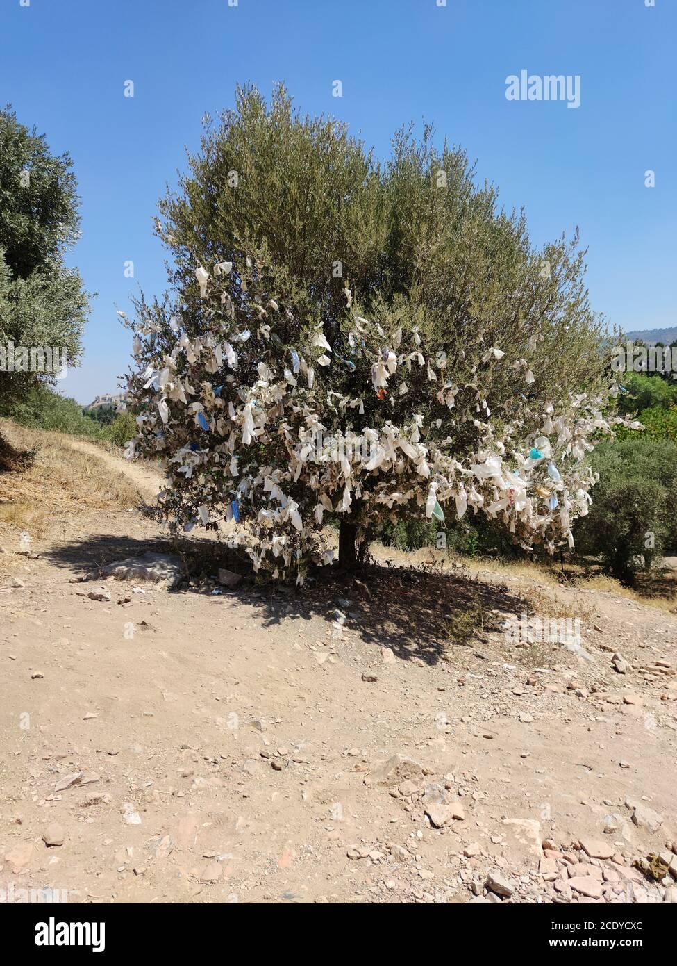 Masques liés à Wish Tree Banque D'Images