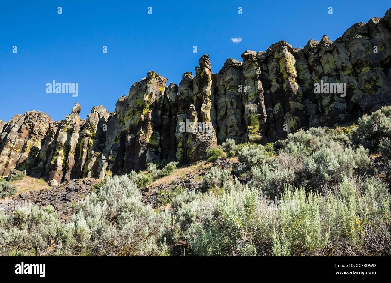 Formation de roches de colonne de basalte avec lichens brillants à Frenchmans Coulee, dans l'est de Washington, aux États-Unis Banque D'Images