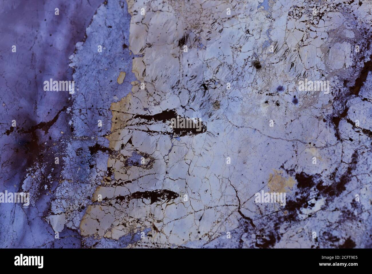 Motif coloré : résidus d'huile naturels sur l'eau Banque D'Images