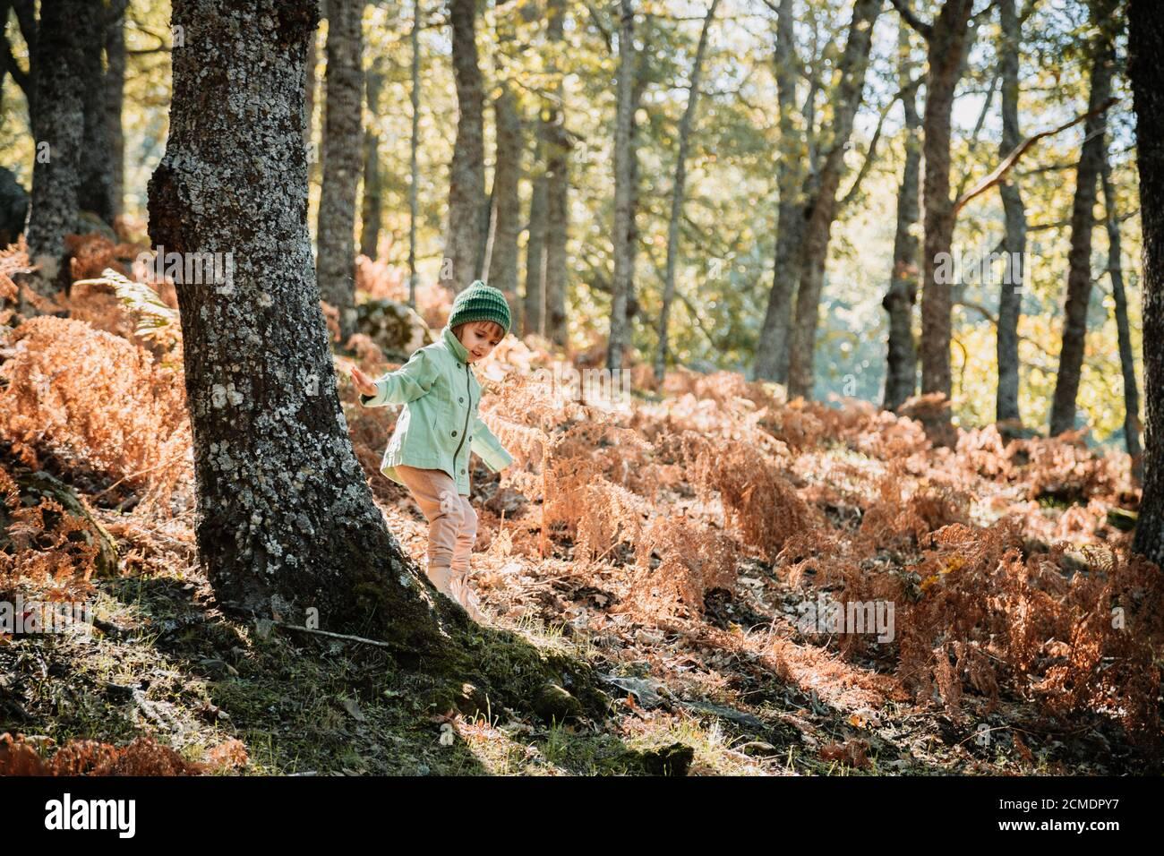 Petite fille dans une forêt d'automne parmi les fougères Banque D'Images