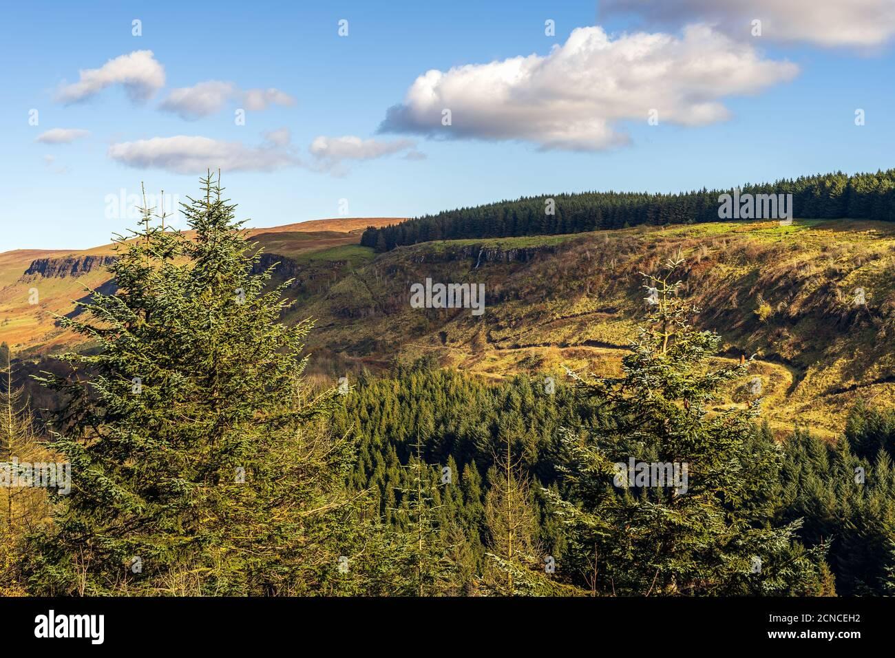 Belle cascade et ruisseau dans la vallée de la forêt de Glenariff Stationnement Banque D'Images