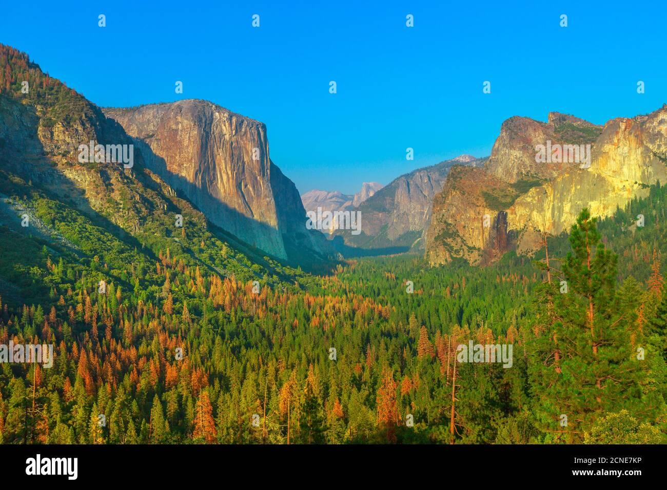 Vue sur le tunnel dans le parc national de Yosemite, vue sur El Capitan et Half Dome, Californie, États-Unis d'Amérique Banque D'Images