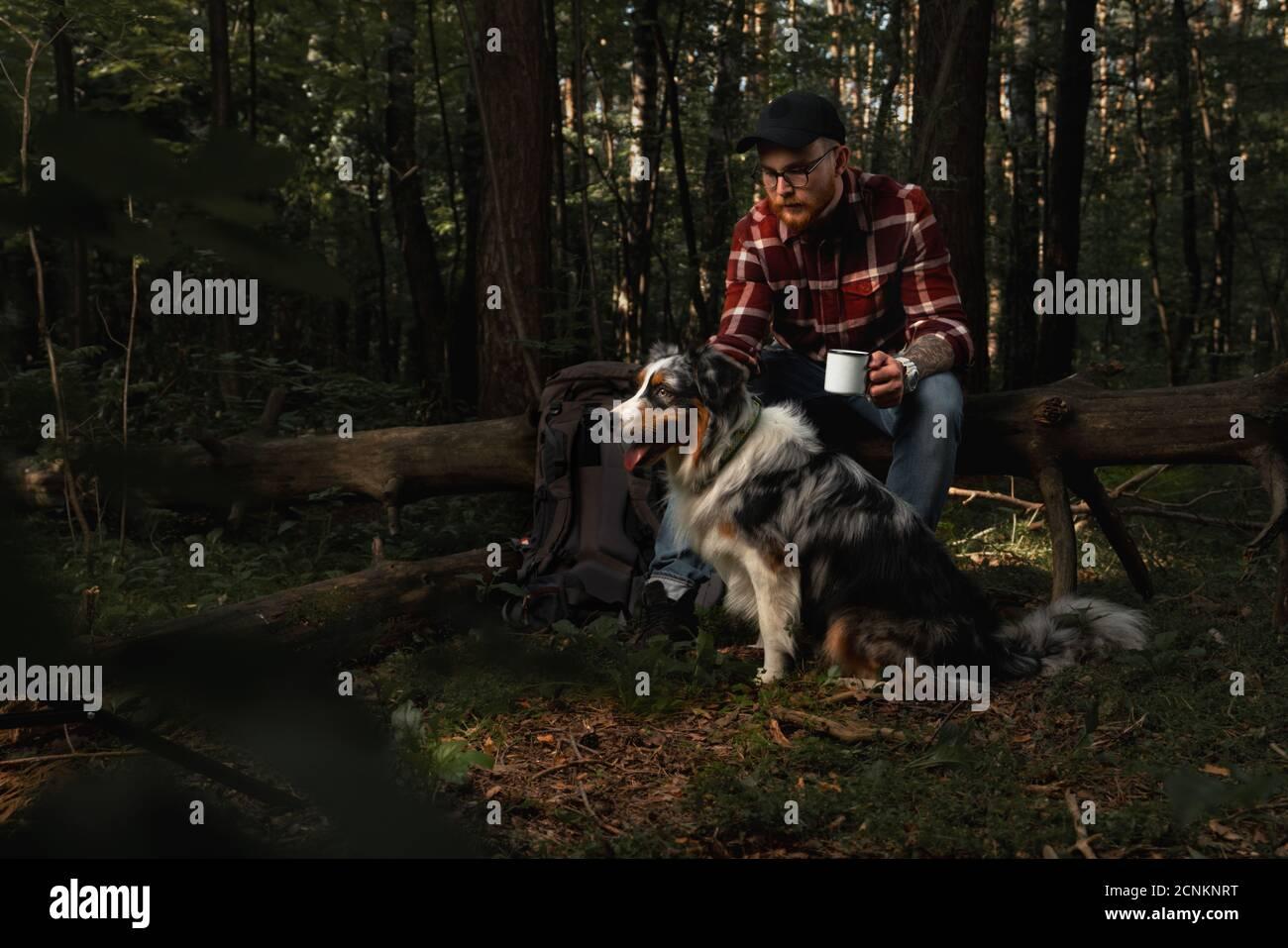 Backpacker Tourist avec Aussie chien de race australienne taling un repos Afther se promener dans la forêt. Style de vie actif avec les animaux. Homme buvant du thé frais préparé Banque D'Images