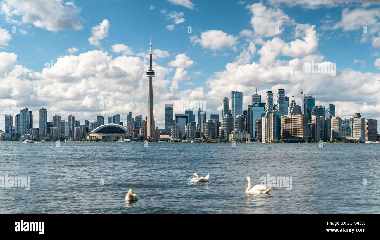 Horizon de Toronto et lac Ontario pendant l'été, Toronto, Ontario, Canada. Banque D'Images