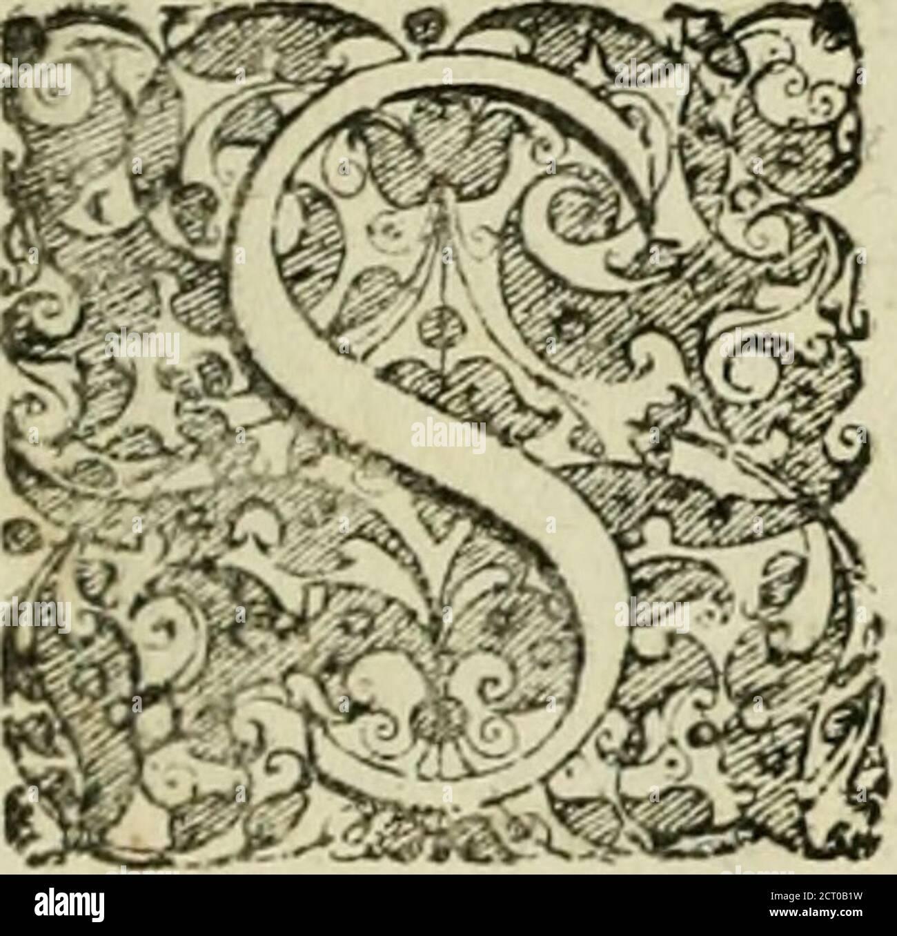 . Matrices natalis serenissimi infantis et principis Boiorum, Maximiliana Emanuelis favoribus sanctuum, heroum crepundiis, et votis Patrum S.I. coronatus : in solennnibus baptismalibus . Olem yclutfoliumunicumj, orbts olum d ^oma?i^B9loquentii^ paremc nuncupatum effe, jwtal.nt Lattantifus, U(c immerito,ut d quojojojojojojolo lux m orhemuniyersumfluit^ ejo- reliquajua in lumata di, Japt^u rta di, Jocturta di kutcira di, Jo^u krta krta di, Jo^u krta di an rta, Jo di an rta di, Jo di krta di an rta, Jo, Jo, Jo, Jo di krta di krta, Jo, Klípta, Jo, Jo, Klípta, Klípta, Klípta, Klípta, Klípta Banque D'Images