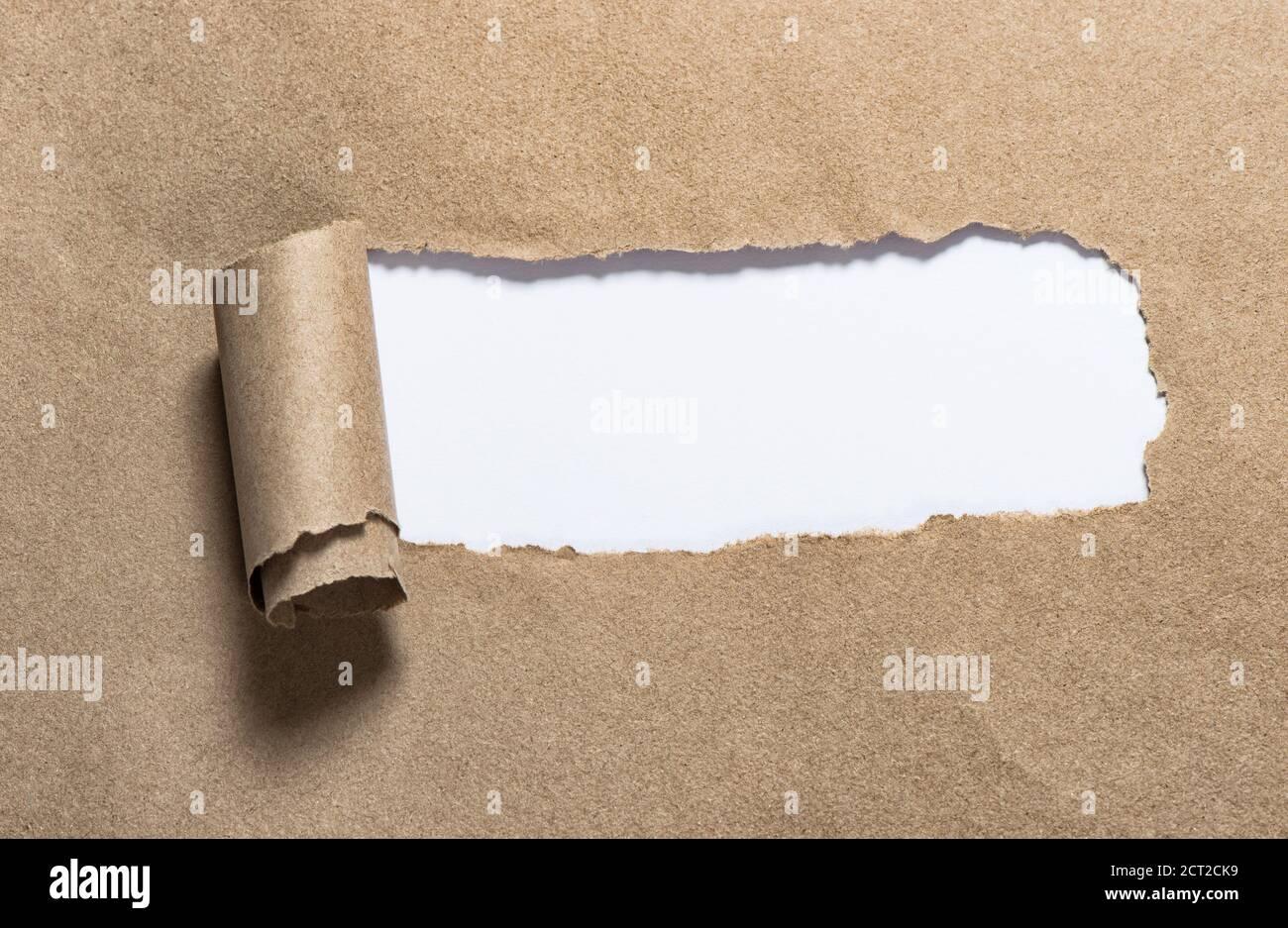 Bande de papier déchirée avec espace de copie blanc. Carton déchiré Banque D'Images
