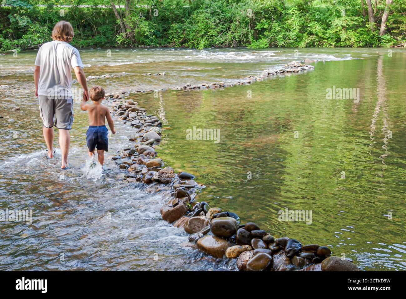 Tennessee Great Smoky Mountains National Park, père père parent parents fils garçon passage à gué, Little River eau peu profonde tenant les mains, Américains Banque D'Images