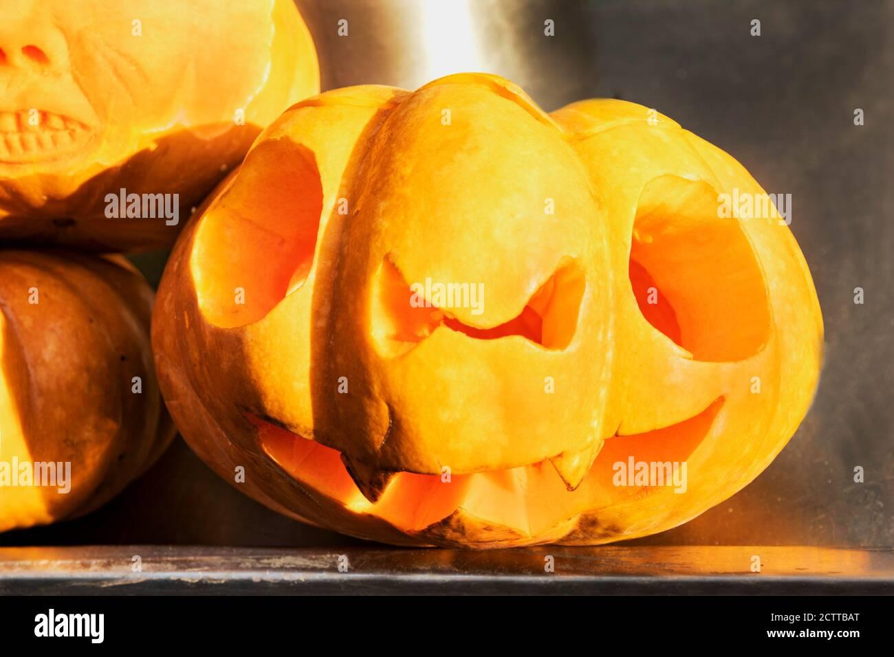 Un effrayant visage sculpté sur une citrouille pour la fête de l'Halloween. La traditionnelle lanterne citrouille de Jack est un symbole de l'Halloween. Le mystique, sym Banque D'Images