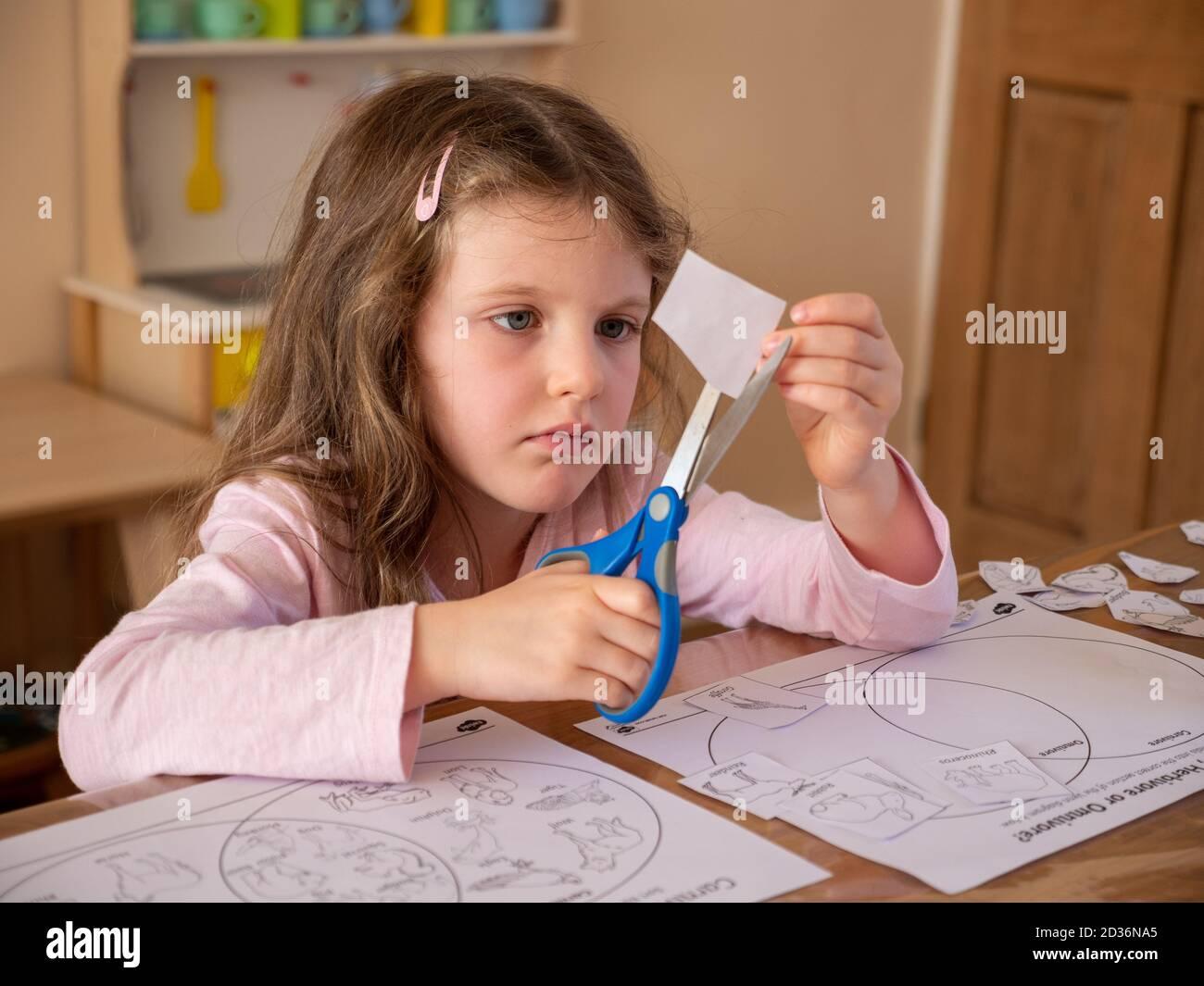 Jeune fille de six ans utilisant des ciseaux pour couper des photos sur papier pour ses devoirs à l'école à la maison, au Royaume-Uni Banque D'Images