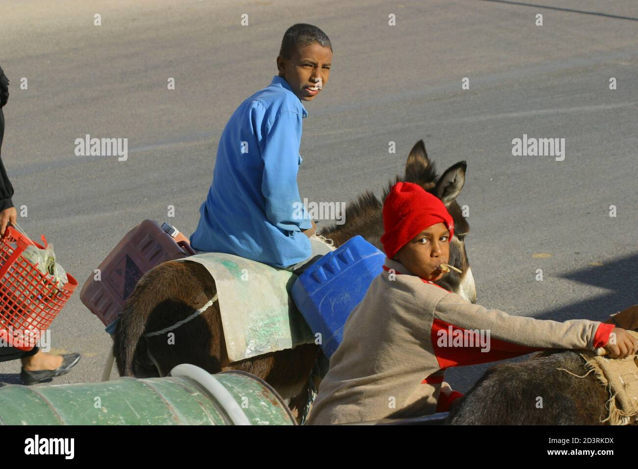 Deux garçons conduisant avec des ânes dans la rue Banque D'Images