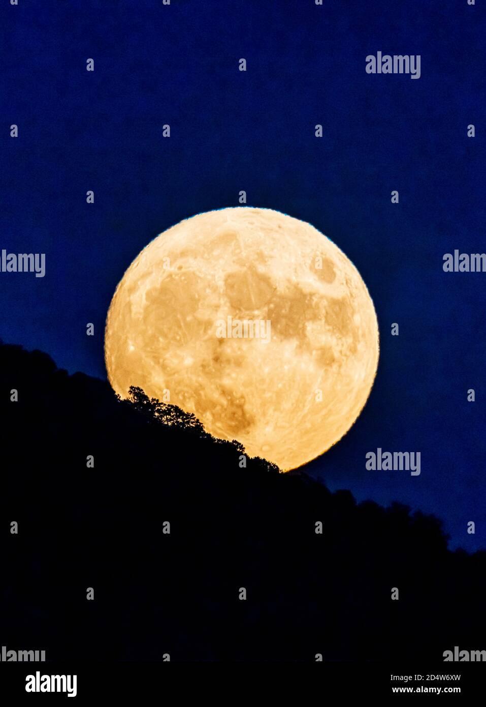 Pleine Lune; la Lune de la moisson; lever au-dessus du Colorado central; États-Unis Banque D'Images