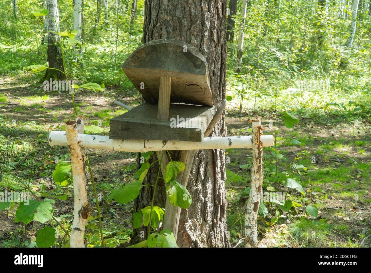 Piege En Bois Fait Maison Pour Les Animaux Et Les Oiseaux Installes Dans La Foret L Inventaire Du Chasseur Photo Stock Alamy