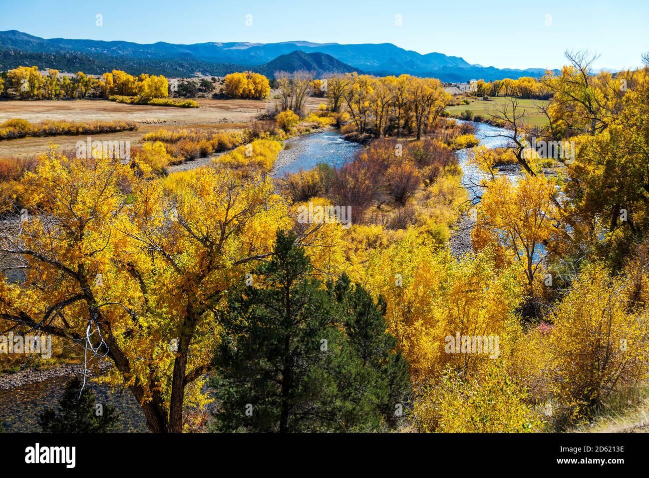 Vue d'automne de la rivière Arkansas; réserve d'animaux de l'État de Big Bend; entre Salida et Buena Vista; comté de Chaffee; Colorado; États-Unis Banque D'Images