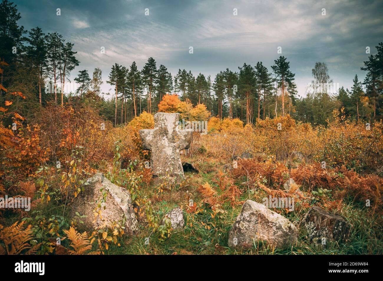 Babtsy, région de Vitebsk, en Biélorussie. Vieille croix de pierre dans l'ancien cimetière. Banque D'Images