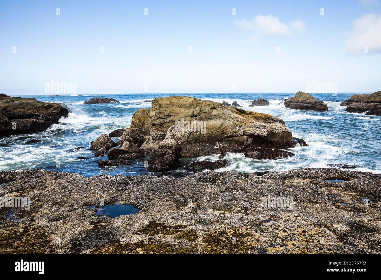 Un littoral rocheux et des vagues se déroulant à la 2ème plage, Olympic Coast National Marine Sanctuary / National Park, Washington, Etats-Unis. Banque D'Images