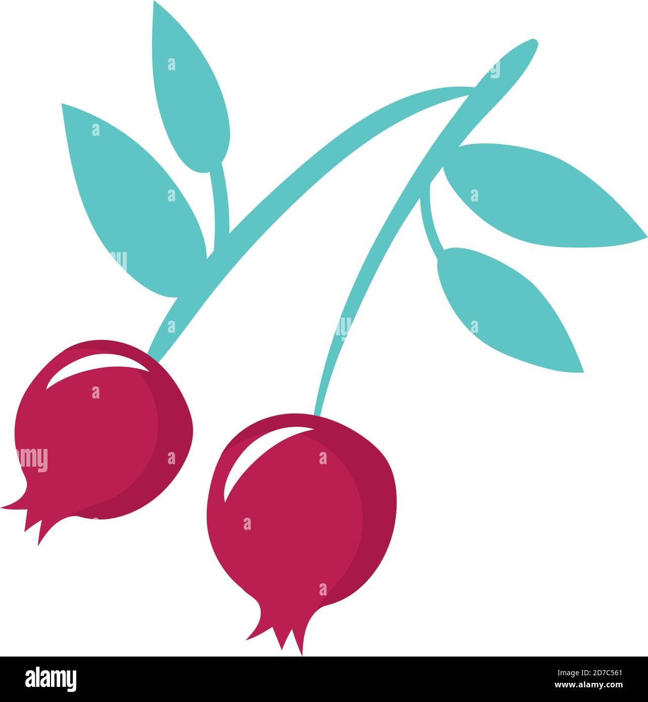 cerises fruits frais nature icône vecteur illustration design Illustration de Vecteur