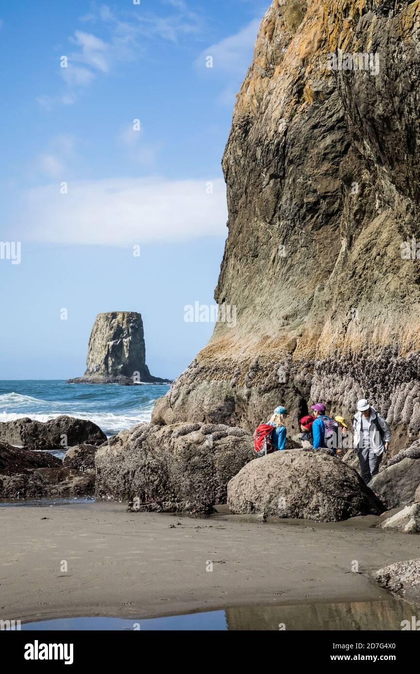 Un petit groupe d'adultes observant les bassins de marée dans et autour de la pile de la mer rochers au large de la côte à la 2ème plage, le sanctuaire marin national olympique et Banque D'Images