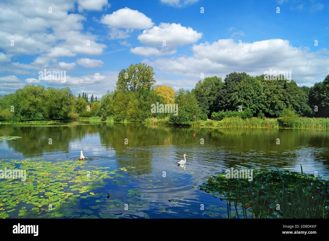 Royaume-Uni, Yorkshire du Sud, Barnsley, Goldthorpe, Bolton Brick Ponds Banque D'Images