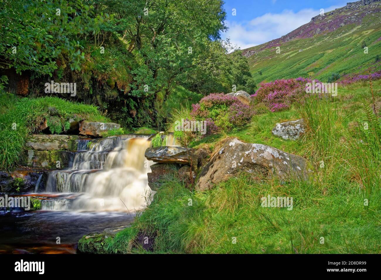 UK,Derbyshire, Peak District,Grindsbrook Clough Cascades et Kinder du Scoutisme Banque D'Images