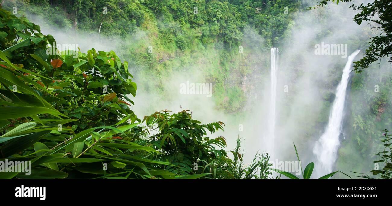 Magnifique cascade de TAD Fane dans la brume matinale, chutes d'eau magiques en saison de pluie, attractions touristiques dans le sud du Laos. Banque D'Images