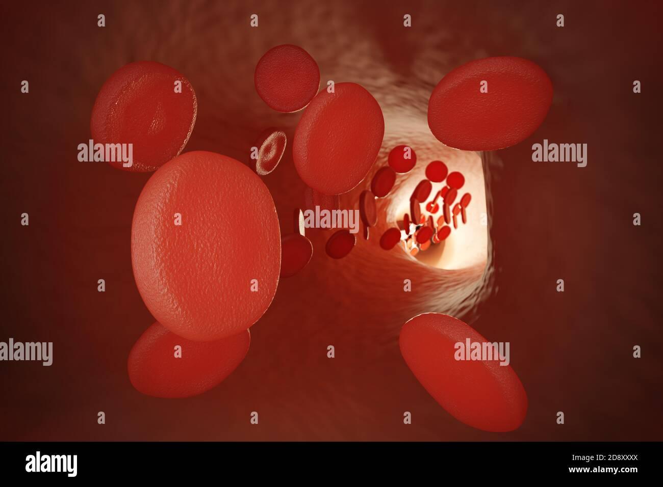 Vue rapprochée des globules rouges dans la veine humaine. Illustration de rendu 3D. Banque D'Images
